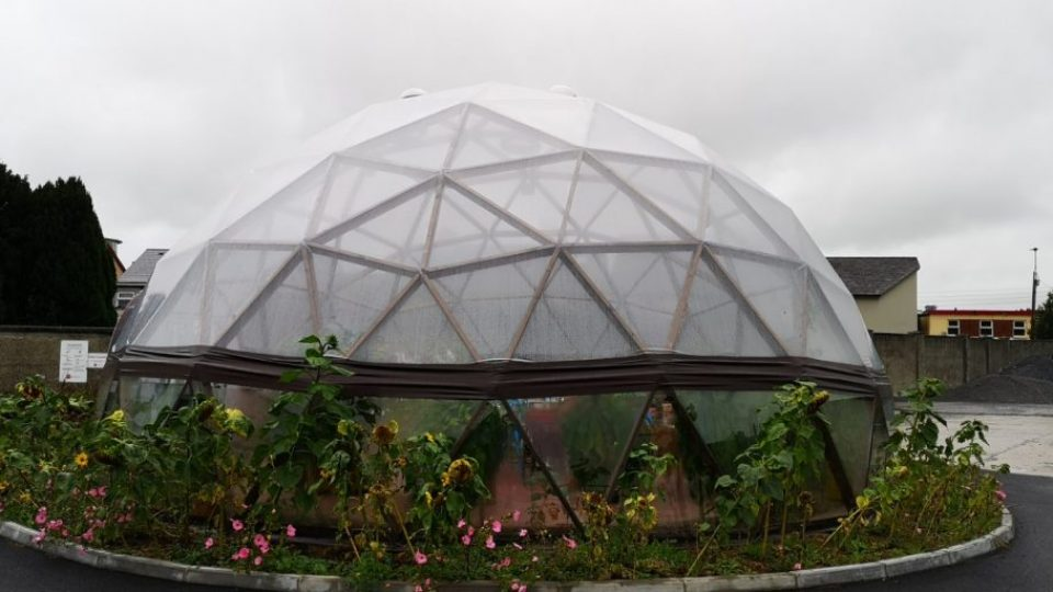 Wood_dome_irealnd_23